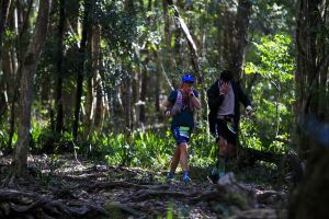 Elephant Trail Race - Surfers Gold Coast
